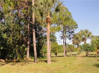 37 Par View Pl, Rotonda West, FL 33947