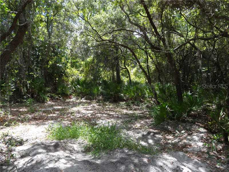 Interior of lot - Vacant Land for sale at 7613 Manatee Ave W, Bradenton, FL 34209 - MLS Number is M5838581