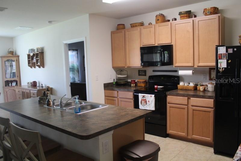Kitchen - Single Family Home for sale at 25000 Lalique Pl, Punta Gorda, FL 33950 - MLS Number is C7421067