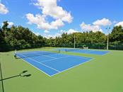 Community tennis courts - Single Family Home for sale at 12071 Aster Ave, Bradenton, FL 34212 - MLS Number is A4205214