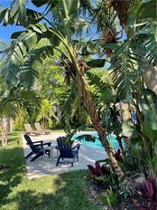 Backyard. - Single Family Home for sale at 1633 Ridgewood Ln, Sarasota, FL 34231 - MLS Number is A4496839