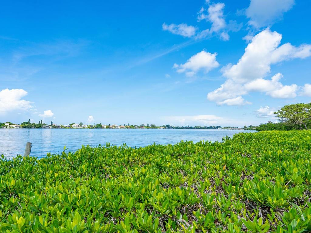 Mangrove habitat for birds and wild life - Single Family Home for sale at 1716 Bayshore Dr, Englewood, FL 34223 - MLS Number is A4445961